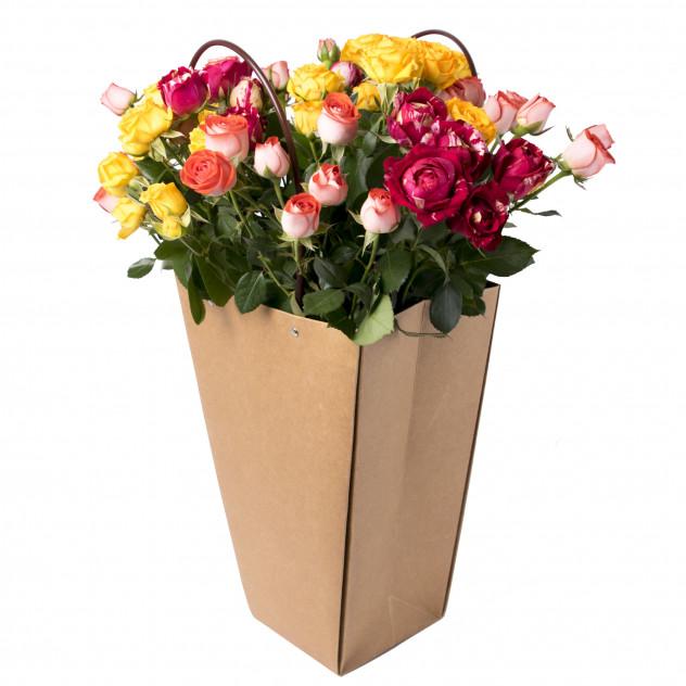 Кустовые розы в пакете № 2